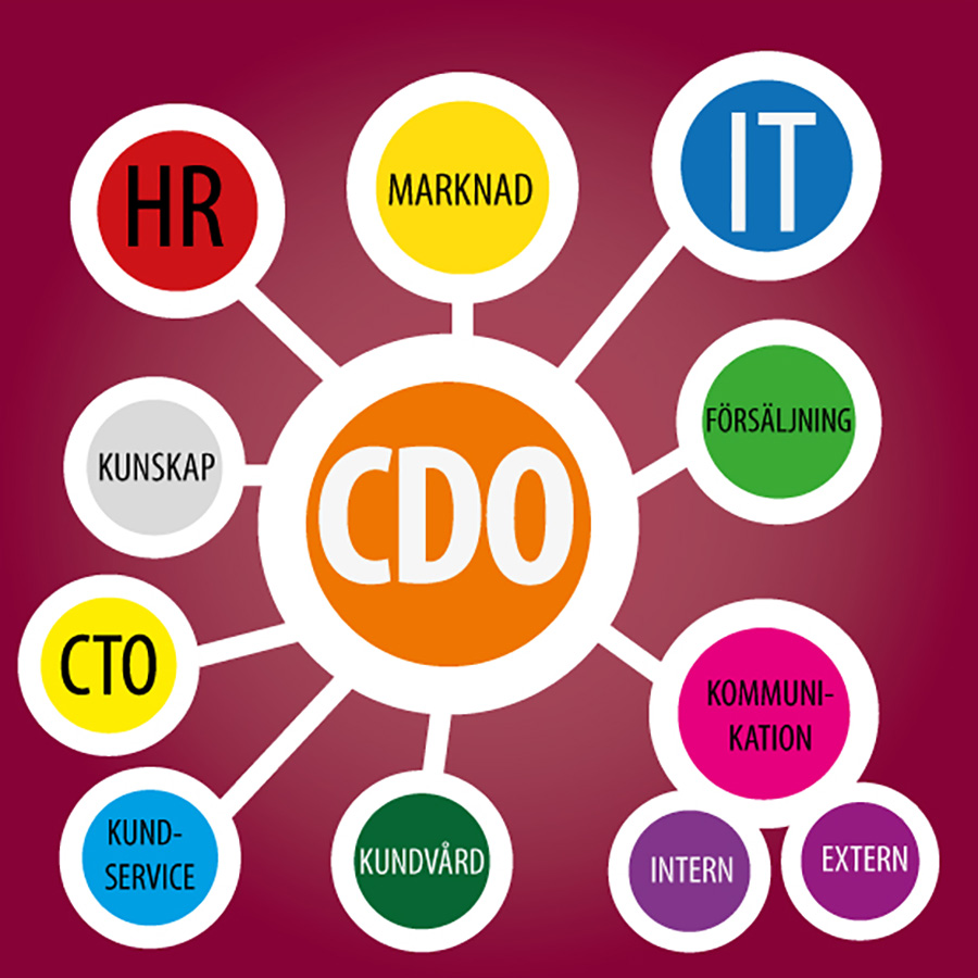 CDO Chief Digital Officer